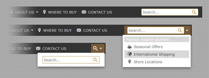 How To Add Search Bar To Navigation Menu